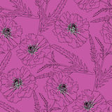 Terry poppy. Floral seamless texture. Royalty Free Stock Images