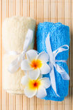 Terrycloth towels and exotic flowers for spa treatments Stock Images