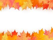Terug naar het Malplaatje van de School De herfstachtergrond met bladeren Eps 10 royalty-vrije illustratie