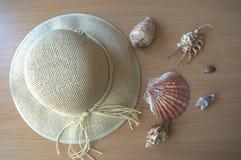 Terug naar het strand Royalty-vrije Stock Foto