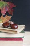 Terug naar school, oude boeken, bord, de herfst. Stock Fotografie