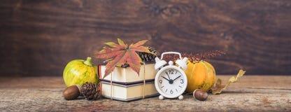 Terug naar School Wekker, bladeren en kegels, eikels, pompoenen 1 september, banner royalty-vrije stock fotografie