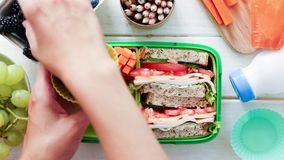 Terug naar schoolconcept - de lunch van de moederverpakking stock video