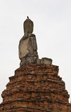 Terug van het gebroken standbeeld van Boedha Royalty-vrije Stock Fotografie