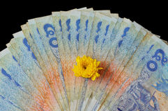 Terug van Thaise vijftig Bahtbankbiljetten Stock Fotografie