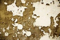 Teruggegeven bakstenen muur met gebieden van gepeld verfwerk Stock Foto
