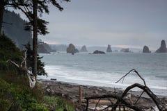 Terza spiaggia alla spinta della La, Washington Fotografie Stock Libere da Diritti