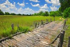 Terzo ponte, riserva di caccia nel delta di Okavango, Botswana di Moremi Stagione delle pioggie con vegetazione e cielo blu verdi fotografia stock