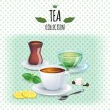 Tesamlingsillustration Olikt stilkoppar och exponeringsglas För svart, grön och orientalisk te för mintkaramell, stock illustrationer