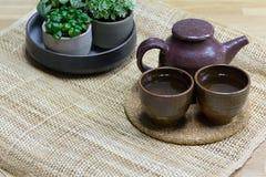 Teservis med dekorativa krukväxter på matt väv Royaltyfri Bild