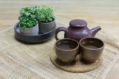 Teservis med dekorativa krukväxter på matt väv Fotografering för Bildbyråer