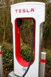 Tesla Superchargers przy zieleń parka czytaniem fotografia royalty free
