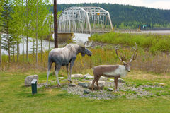 The teslin bridge with wild-life statues in the foreground Royalty Free Stock Photos