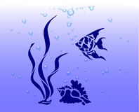 Tesoro dell'oceano, Fotografie Stock