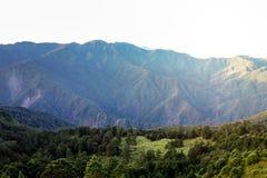 Tesoro di verde della montagna di Taiwan immagine stock