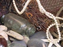 Tesoros del mar Foto de archivo libre de regalías