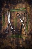 Tesouras e ervas Fotos de Stock