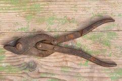 Tesouras oxidadas velhas do metal Imagem de Stock Royalty Free