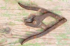 Tesouras oxidadas velhas do metal Fotos de Stock