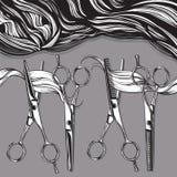 Tesouras profissionais de Chrome para cabeleireiro ilustração royalty free