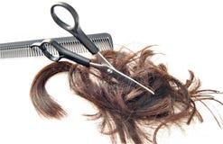 Tesouras que cortam o cabelo Imagens de Stock