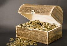 Tesouro-caixa Fotografia de Stock