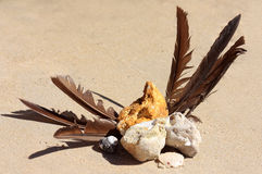 Tesouro de Beachcombing imagem de stock
