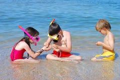 Tesouros de exploração do seashore Foto de Stock