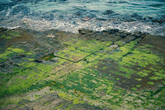 Tessellated Pavement in Pirates Bay. View of Tessellated Pavement in Pirates Bay, Tasmania Stock Images