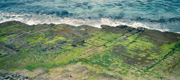 Tessellated Pavement in Pirates Bay. View of Tessellated Pavement in Pirates Bay, Tasmania Stock Photos