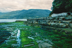 Tessellated Pavement in Pirates Bay. View of Tessellated Pavement in Pirates Bay, Tasmania Stock Image