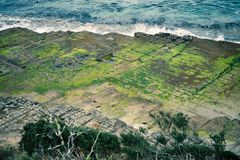 Tessellated Pavement in Pirates Bay. View of Tessellated Pavement in Pirates Bay, Tasmania Royalty Free Stock Image