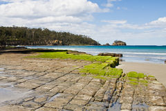 Tessellated pavement, Tasmania. Natural rock formations named the Tessellated Pavement in Eaglehawk Neck, Tasmania Stock Images