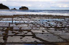 Tessellated pavement - Tasmania Royalty Free Stock Images