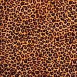 Tessuto del leopardo Fotografia Stock