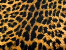Tessuto del modello del leopardo immagine stock
