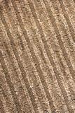 Tessuto del velluto di cotone Fotografia Stock