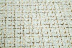Tessuto della luce morbida con il plaid dello zecchino Fotografie Stock
