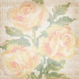 Tessuto della priorità bassa con le rose ricamate Fotografia Stock Libera da Diritti