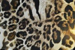 Tessuto della tigre Immagini Stock