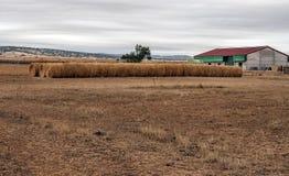 Tessuto di agricoltura Fotografia Stock Libera da Diritti