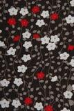 Tessuto nero del fondo con i fiori rossi e bianchi Immagini Stock Libere da Diritti