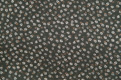 Tessuto nero del panno delle rose bianche Fotografia Stock Libera da Diritti