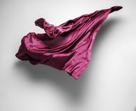 Tessuto porpora di volo Immagini Stock
