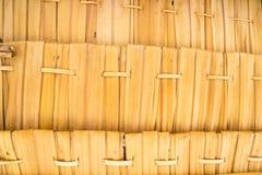 Tessuto secco delle foglie Immagine Stock Libera da Diritti