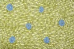 Tessuto verde tricottato del mohair con i punti Fotografia Stock