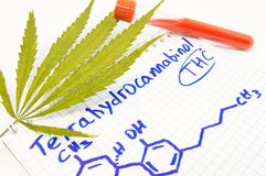 Test or analysis for the presence of Tetrahydrocannabinol THC in blood. Leaf of hemp, test tube lay near note with title of cann royalty free stock photo