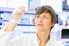Test for the cancer cells Royalty Free Stock Photos
