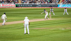 Test Cricket Match Stock Images