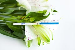 Test di gravidanza positivo con un mazzo dei fiori bianchi di alstroemeria fotografie stock
